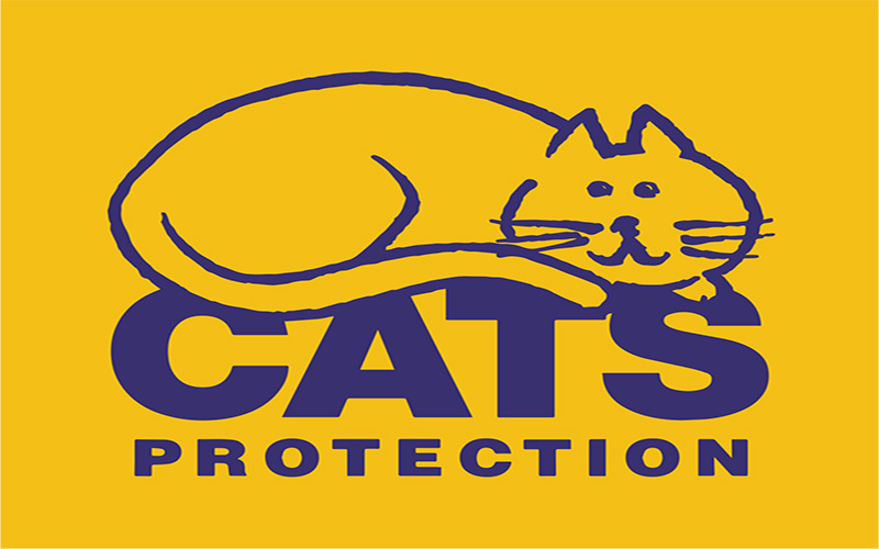 Cats Protection Brighton